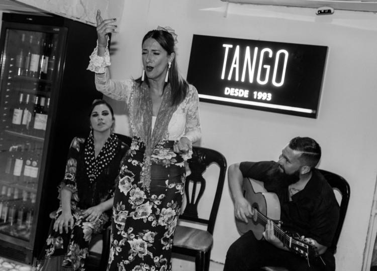 Flamenco Show Puerto Banus 11