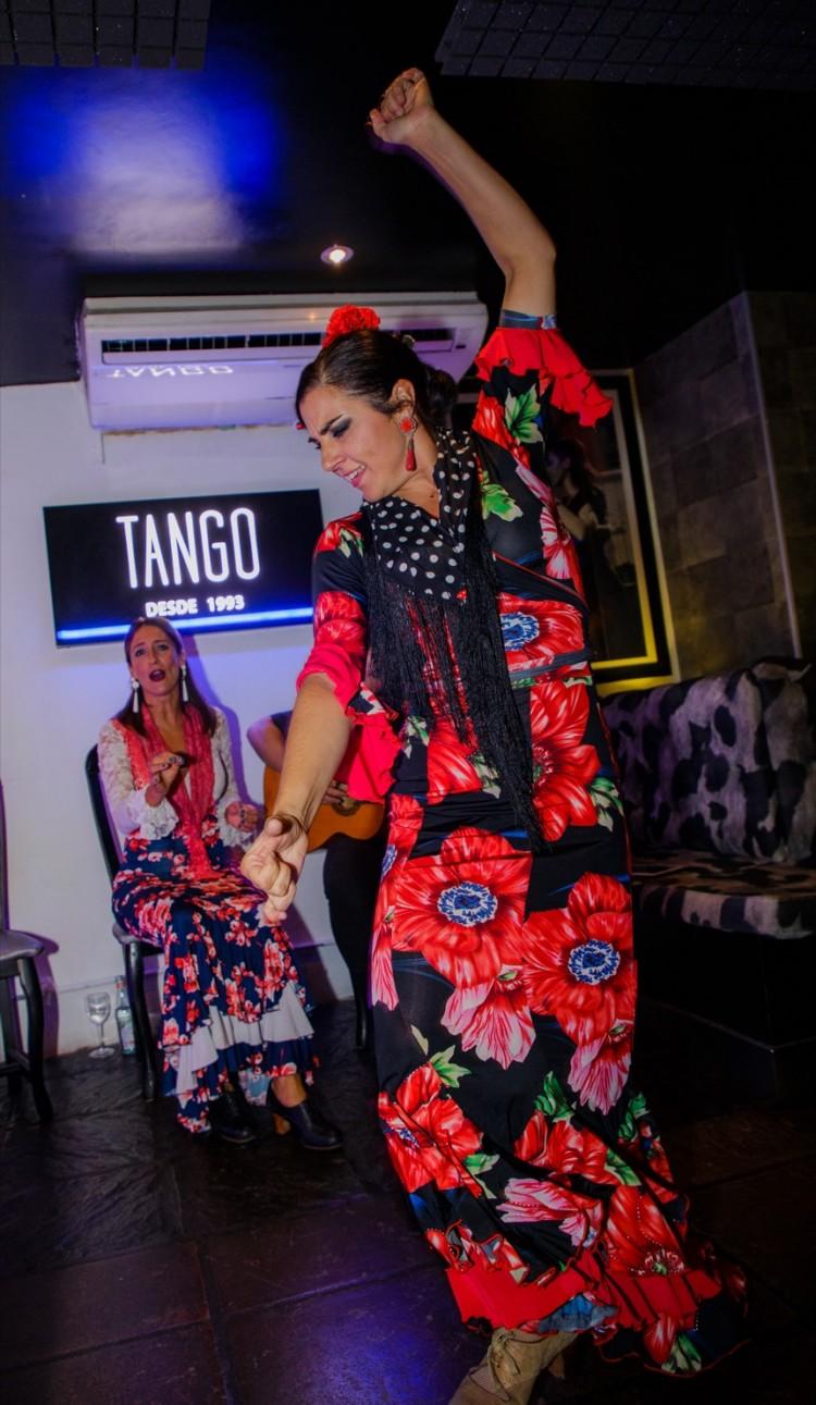 Flamenco Show Puerto Banus