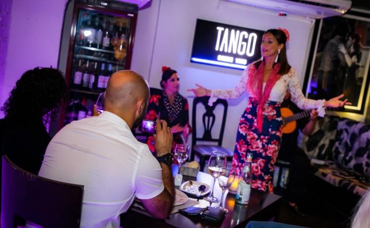 Flamenco Show Puerto Banus 13