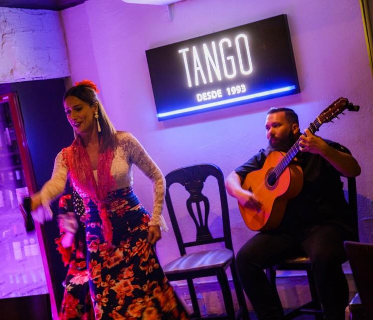 Flamenco Show Puerto Banus 12