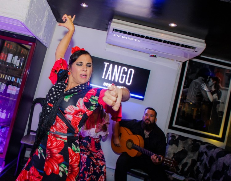 Flamenco Show Puerto Banus 7