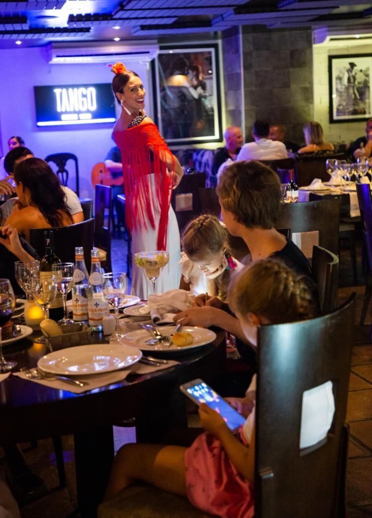 Flamenco Show Puerto Banus 6